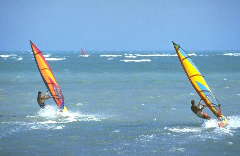 Holiday Inn Miami Beach Oceanfront wind surfing