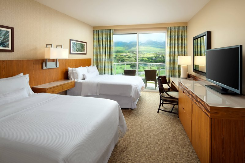 Double Mountain View Guest Room