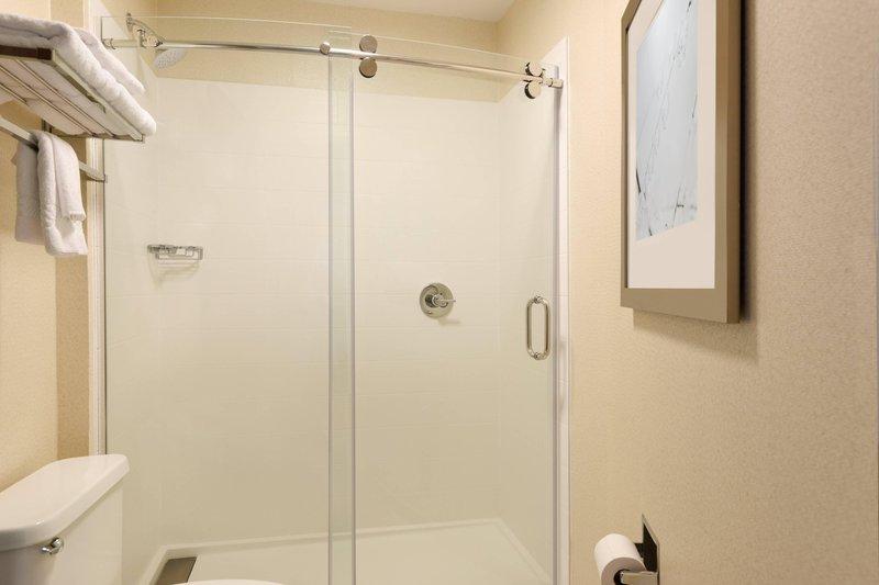 King Suite Shower