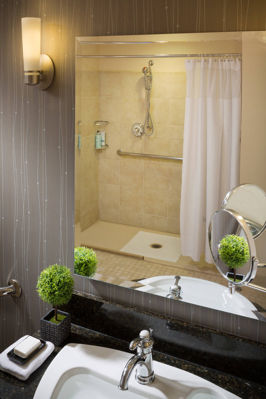 Accessible Bathroom and Shower