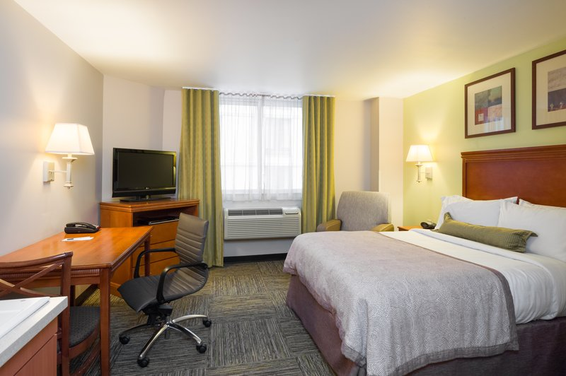 Spacious and comfortable studio suite